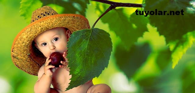 Anne Karnında Bebek Gelişimi İçin Ne Yemeli