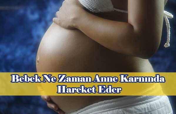Bebek Ne Zaman Anne Karnında Hareket Eder